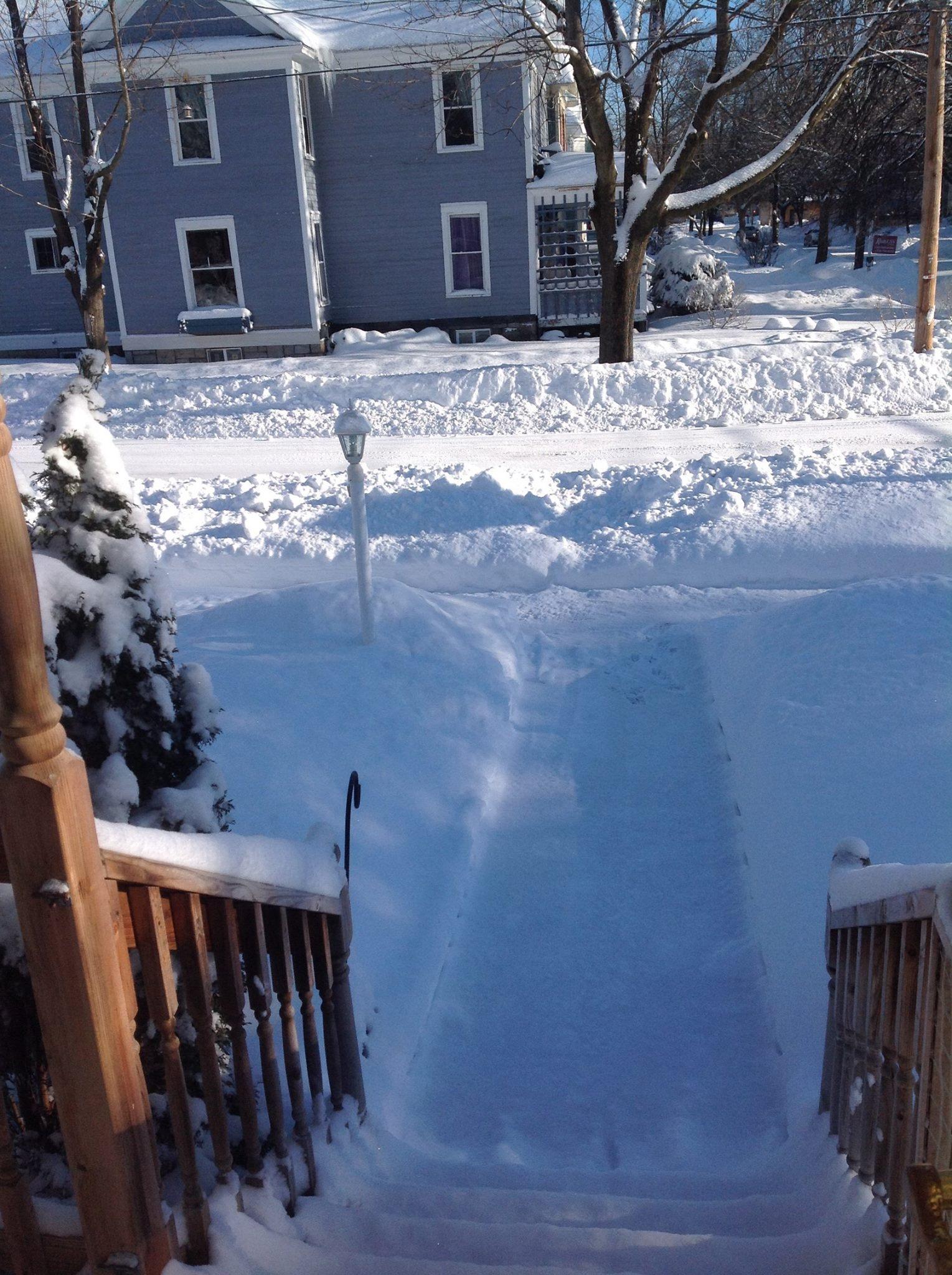 Davies Street Snow in February